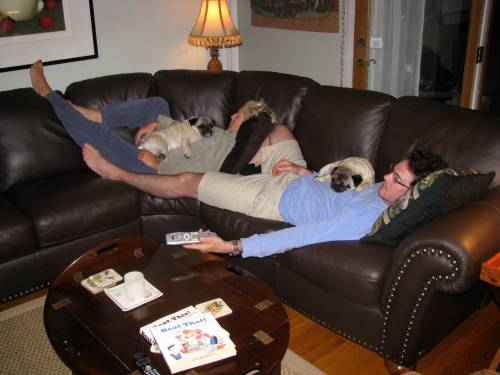 The essence of summer...Mom, Dad, Lizzie, and I all napping in Grandma's tv room. Pure bliss for this pug!